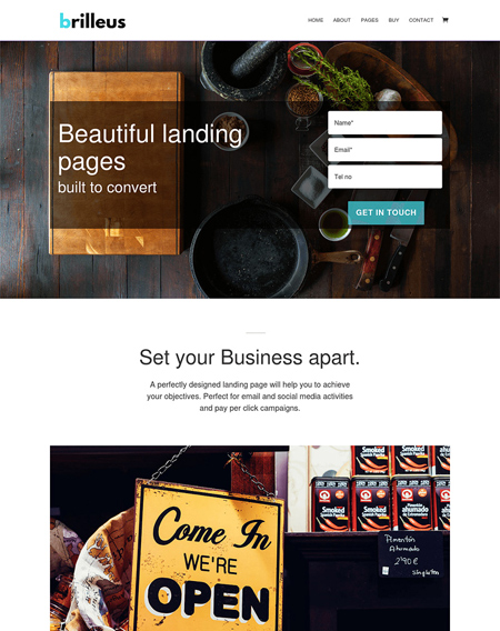 Brilleus Landing Pages